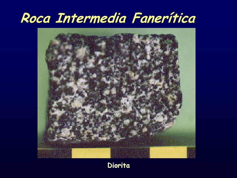 Roca Intermedia Fanerítica Diorita