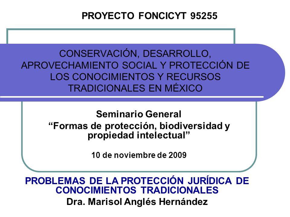 CONSERVACIÓN, DESARROLLO, APROVECHAMIENTO SOCIAL Y PROTECCIÓN DE LOS CONOCIMIENTOS Y RECURSOS TRADICIONALES EN MÉXICO Seminario General Formas de prot