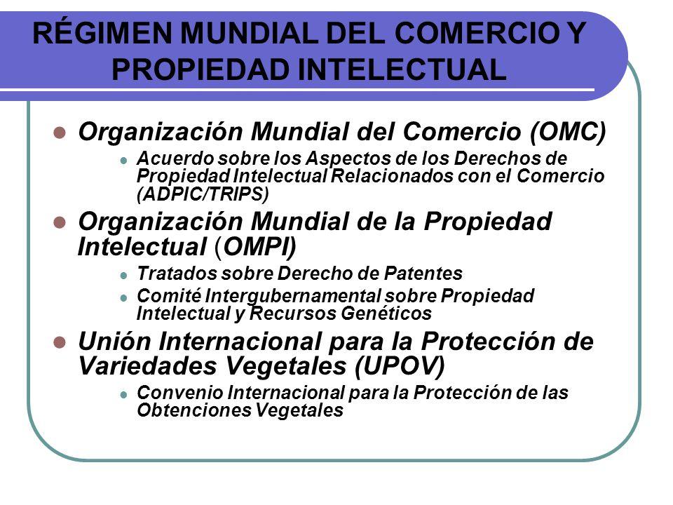 RÉGIMEN MUNDIAL DEL COMERCIO Y PROPIEDAD INTELECTUAL Organización Mundial del Comercio (OMC) Acuerdo sobre los Aspectos de los Derechos de Propiedad I