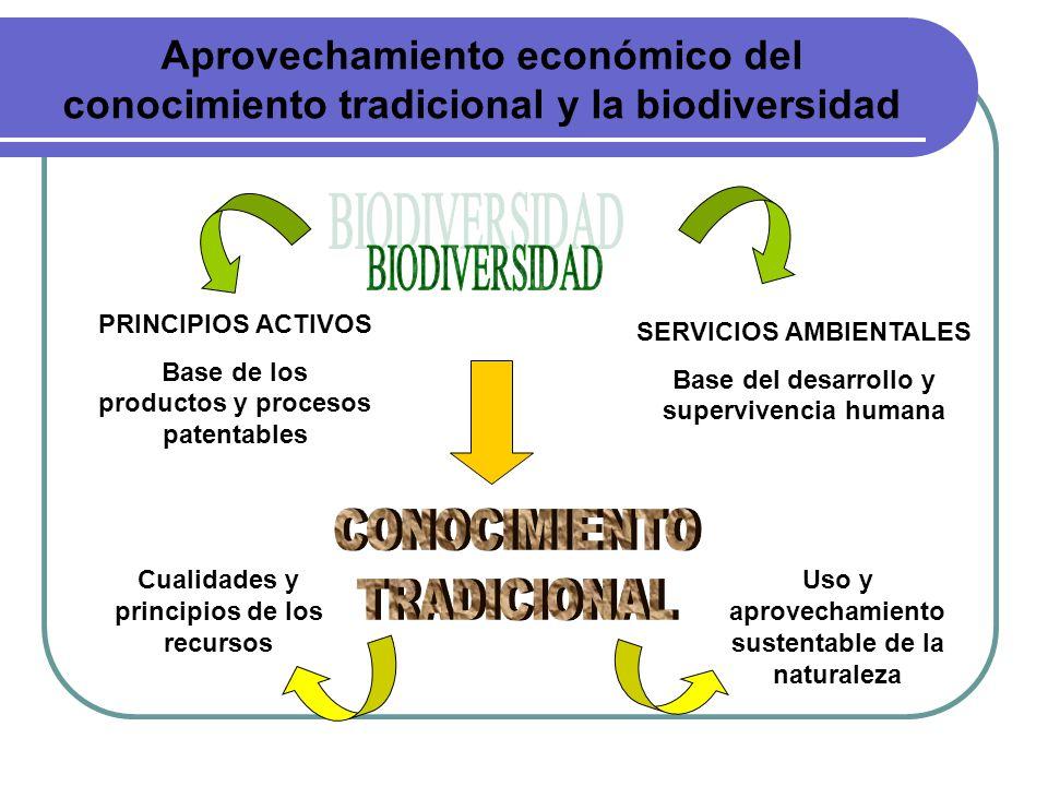Aprovechamiento económico del conocimiento tradicional y la biodiversidad PRINCIPIOS ACTIVOS Base de los productos y procesos patentables SERVICIOS AM