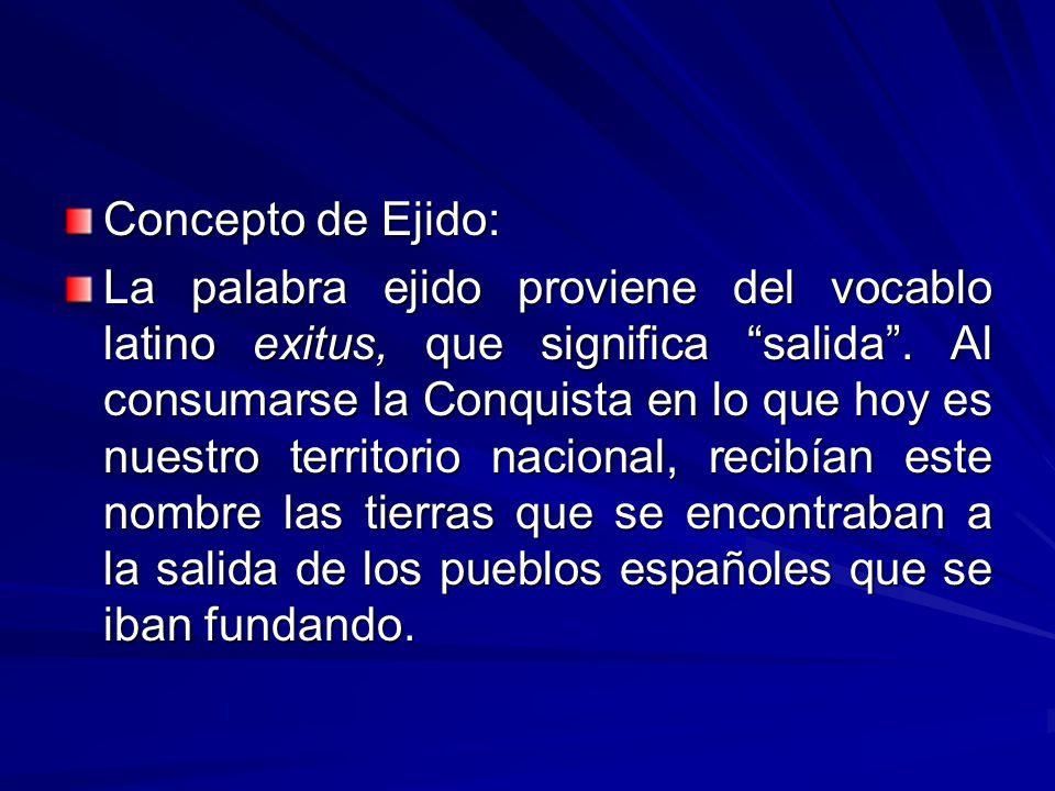 Concepto de Ejido: La palabra ejido proviene del vocablo latino exitus, que significa salida.
