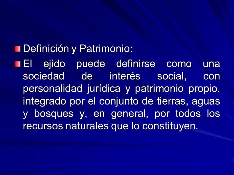 Definición y Patrimonio: El ejido puede definirse como una sociedad de interés social, con personalidad jurídica y patrimonio propio, integrado por el conjunto de tierras, aguas y bosques y, en general, por todos los recursos naturales que lo constituyen.