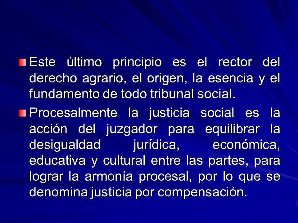 Este último principio es el rector del derecho agrario, el origen, la esencia y el fundamento de todo tribunal social.