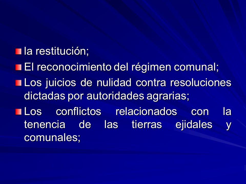 la restitución; El reconocimiento del régimen comunal; Los juicios de nulidad contra resoluciones dictadas por autoridades agrarias; Los conflictos relacionados con la tenencia de las tierras ejidales y comunales;