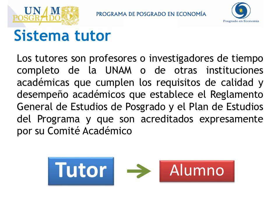 Los tutores son profesores o investigadores de tiempo completo de la UNAM o de otras instituciones académicas que cumplen los requisitos de calidad y