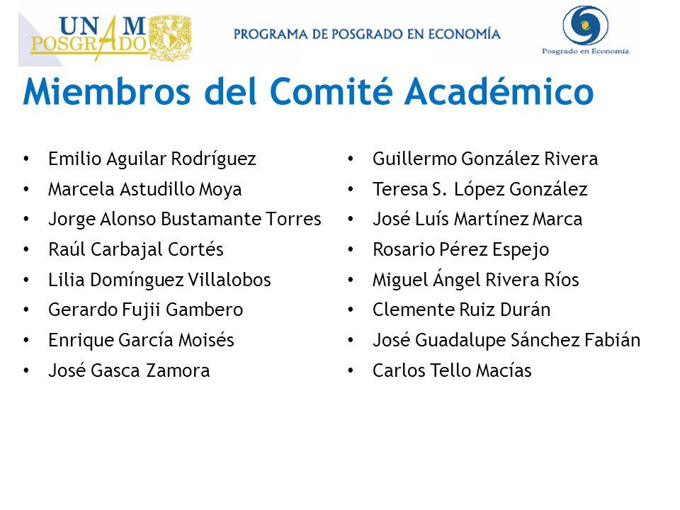 Miembros del Comité Académico Emilio Aguilar Rodríguez Marcela Astudillo Moya Jorge Alonso Bustamante Torres Raúl Carbajal Cortés Lilia Domínguez Vill