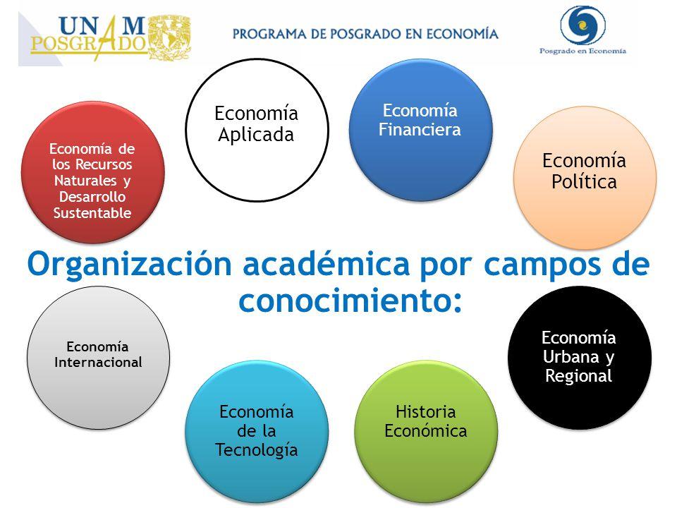 Organización académica por campos de conocimiento: Economía de los Recursos Naturales y Desarrollo Sustentable Economía Aplicada Economía Financiera Economía Política Economía Urbana y Regional Historia Económica Economía de la Tecnología Economía Internacional