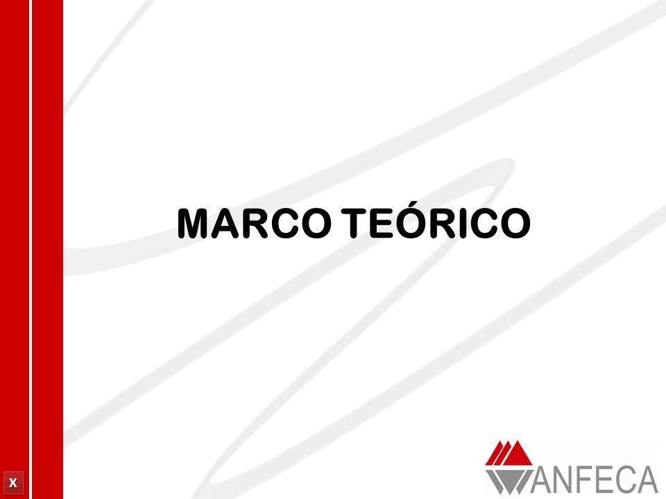 XXXX XXXX MARCO TEÓRICO