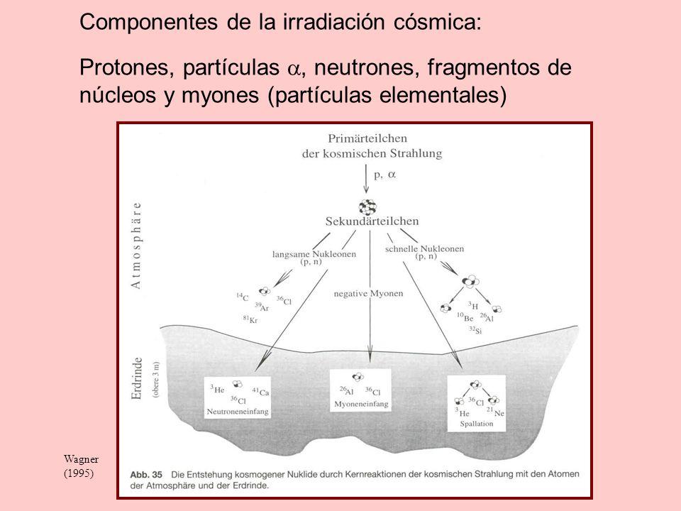 Tritio ( 3 H) Tritio se forma en la atmósfera de la interacción de neutrones cósmicos con N: 14 N + n 3 H + 12 C Tritio decae con emisión de partículas - a 3 He estable 3 H 3 He + - + + 0.01861 MeV T 1/2 = 12.26 a, = 5.6537 x 10 -2 a -1 ; 3 H = 3.01603 uma La concentración de tritio se mide en TU (Tritium units).