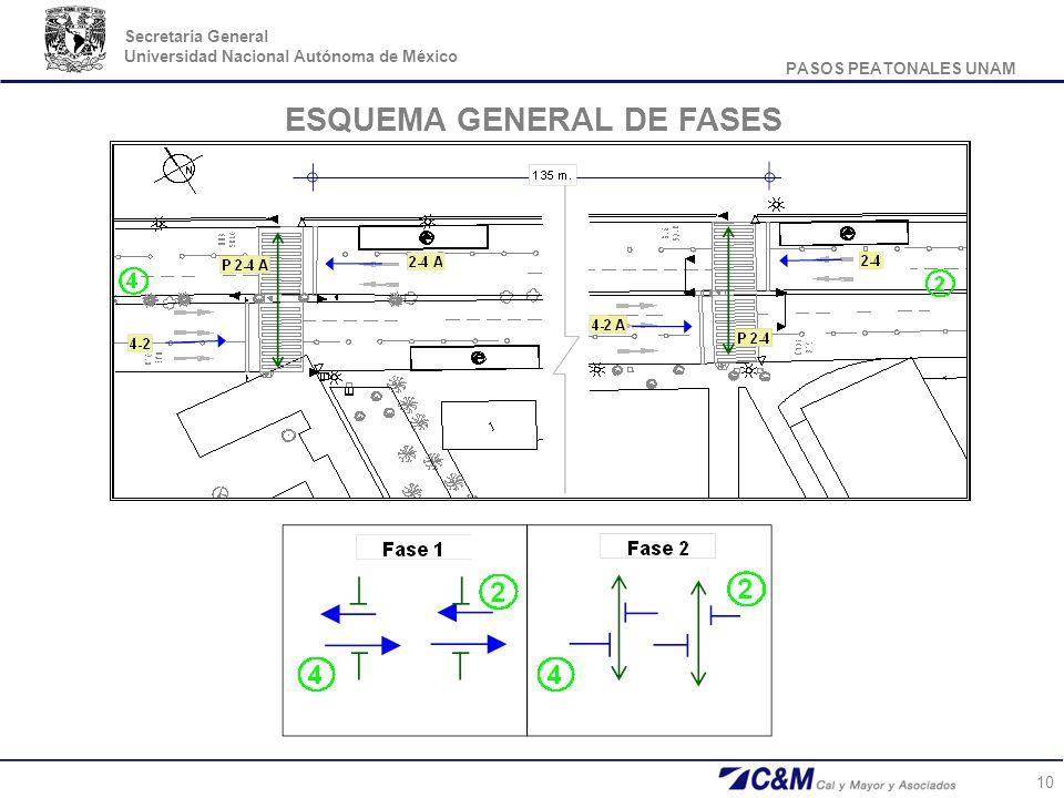 PASOS PEATONALES UNAM Secretaria General Universidad Nacional Autónoma de México 10 ESQUEMA GENERAL DE FASES