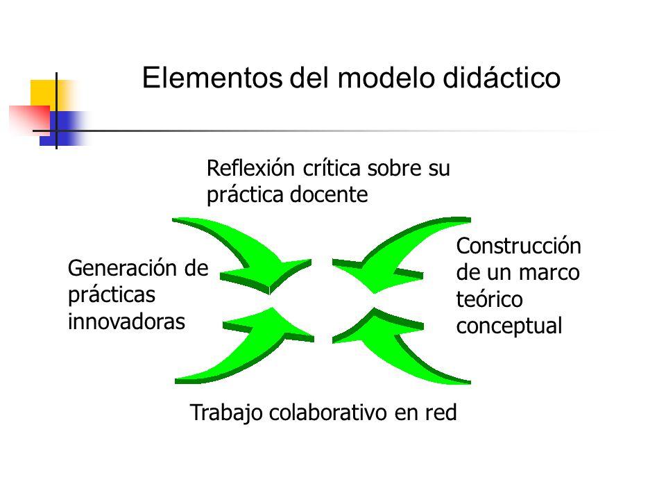 Elementos del modelo didáctico Reflexión crítica sobre su práctica docente Construcción de un marco teórico conceptual Trabajo colaborativo en red Generación de prácticas innovadoras