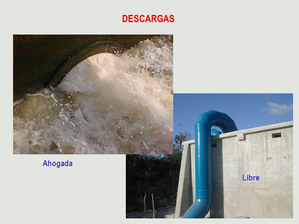 DESCARGAS Libre Ahogada
