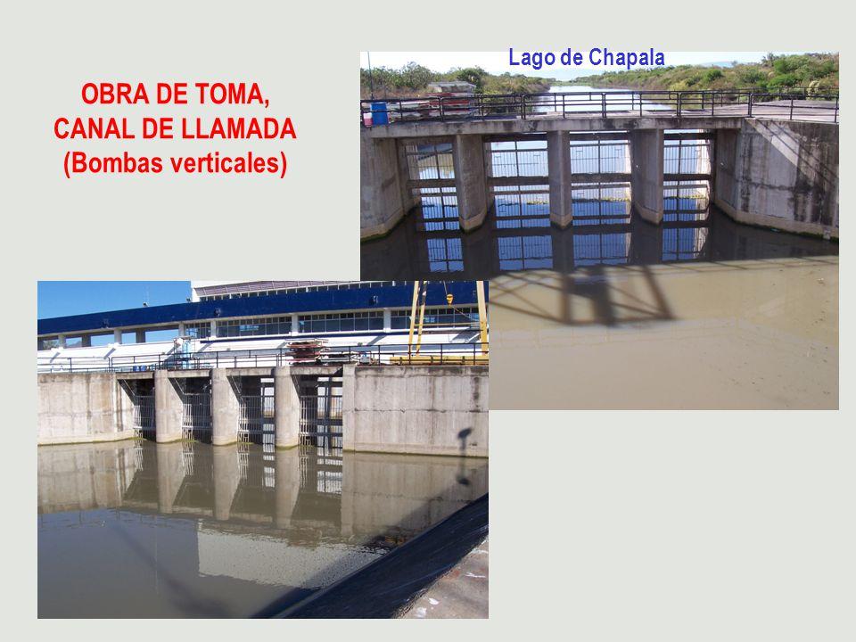 OBRA DE TOMA, CANAL DE LLAMADA (Bombas verticales) Lago de Chapala