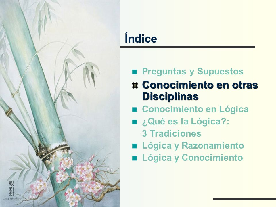 Conocimiento en otras Disciplinas FÍSICA Lo fundamental en el conocimiento físico es que se tiene una teoría, expresada matemáticamente, que se confronta con el experimento.
