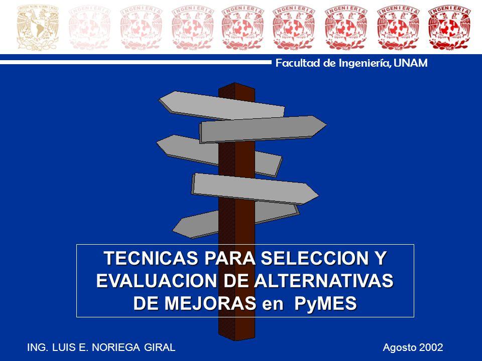 ING. LUIS E. NORIEGA GIRAL Agosto 2002 Facultad de Ingeniería, UNAM TECNICAS PARA SELECCION Y EVALUACION DE ALTERNATIVAS DE MEJORAS en PyMES