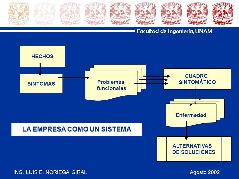 ING. LUIS E. NORIEGA GIRAL Agosto 2002 Facultad de Ingeniería, UNAM HECHOS SINTOMAS CUADRO SINTOMÁTICO Problemas funcionales Enfermedad ALTERNATIVAS D