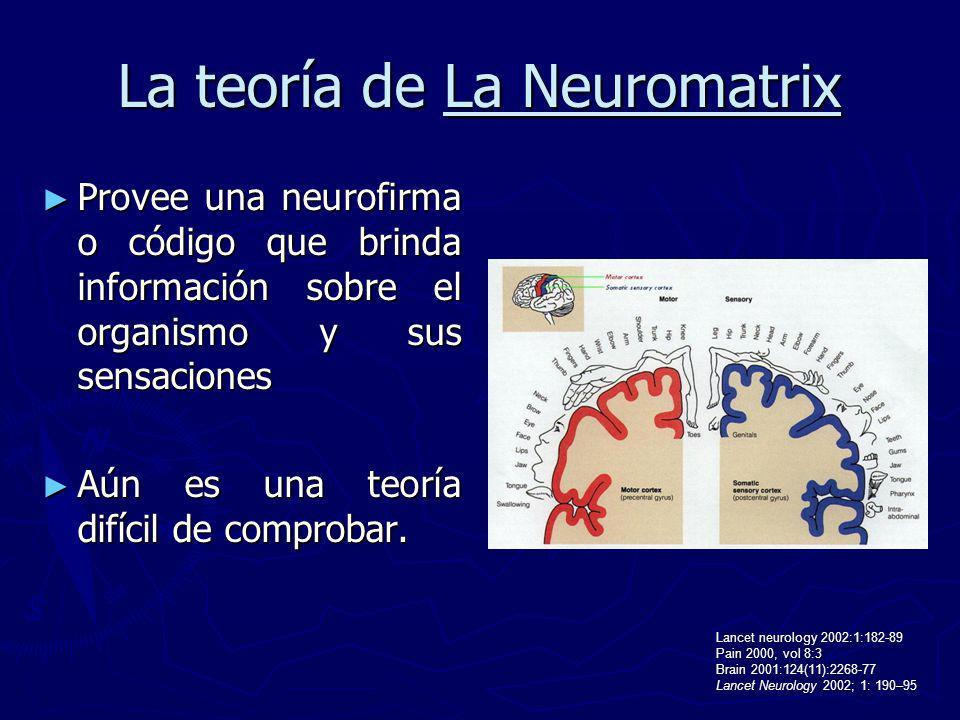 La teoría de La Neuromatrix Provee una neurofirma o código que brinda información sobre el organismo y sus sensaciones Provee una neurofirma o código