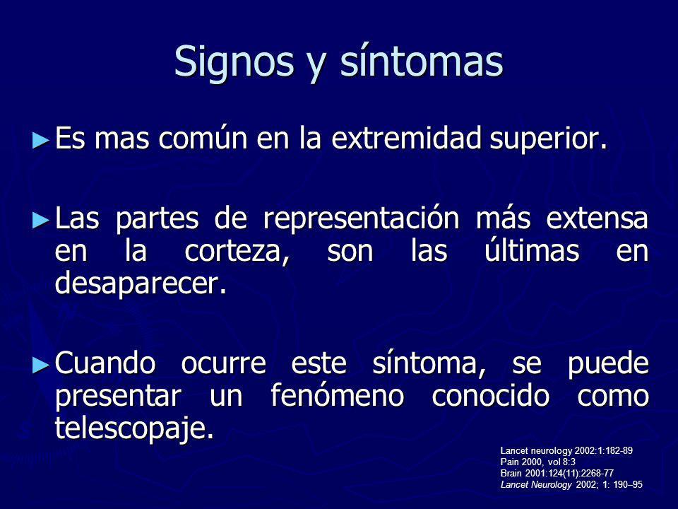 Signos y síntomas Es mas común en la extremidad superior. Es mas común en la extremidad superior. Las partes de representación más extensa en la corte