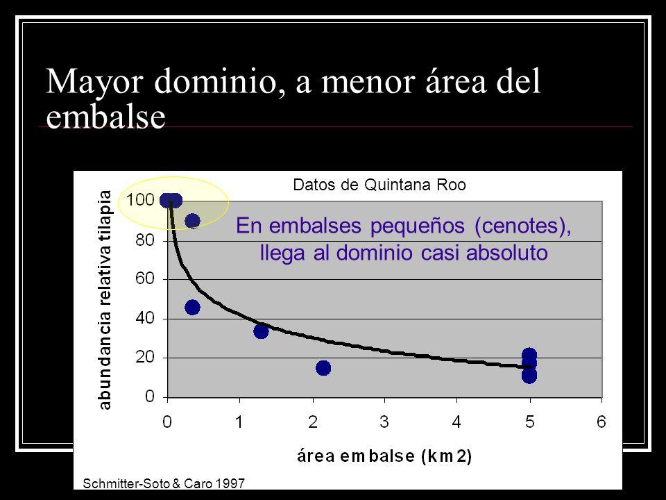 Mayor dominio, a menor área del embalse Schmitter-Soto & Caro 1997 Datos de Quintana Roo En embalses pequeños (cenotes), llega al dominio casi absolut