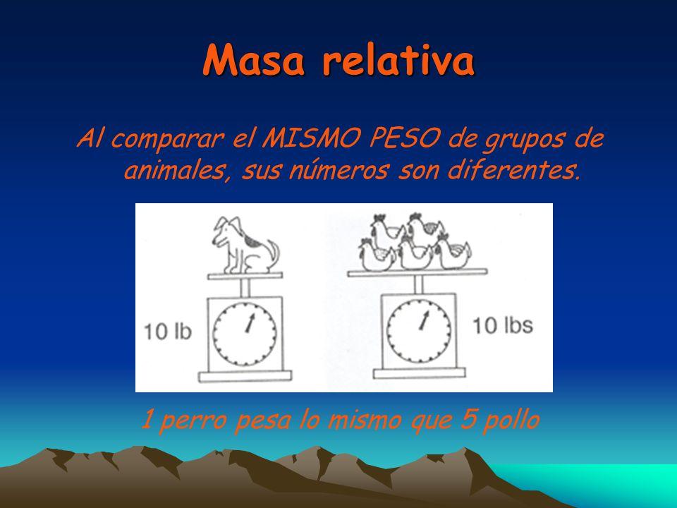 Masa relativa Al comparar el MISMO PESO de grupos de animales, sus números son diferentes. 1 perro pesa lo mismo que 5 pollo