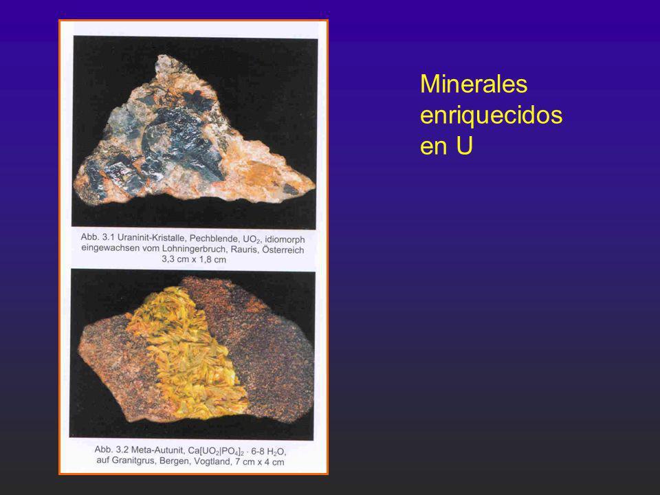Minerales enriquecidos en U