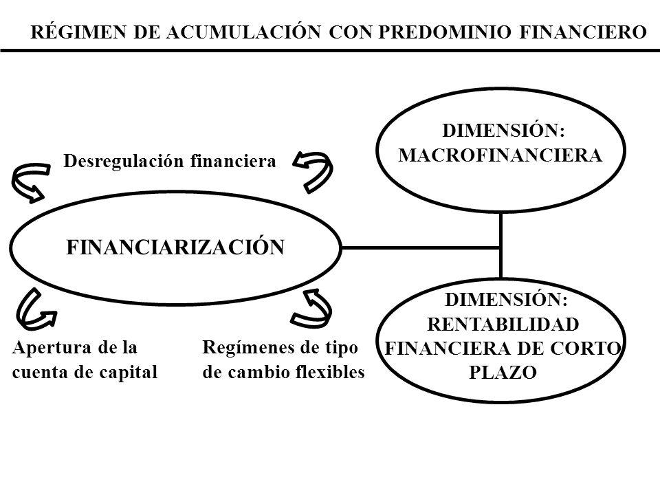 DIMENSIÓN: MACROFINANCIERA Sucede cuando en los espacios monetarios de las economías subdesarrolladas se abandona la demanda de moneda nacional en beneficio de alguna otra moneda o cualquier objeto especulativo.