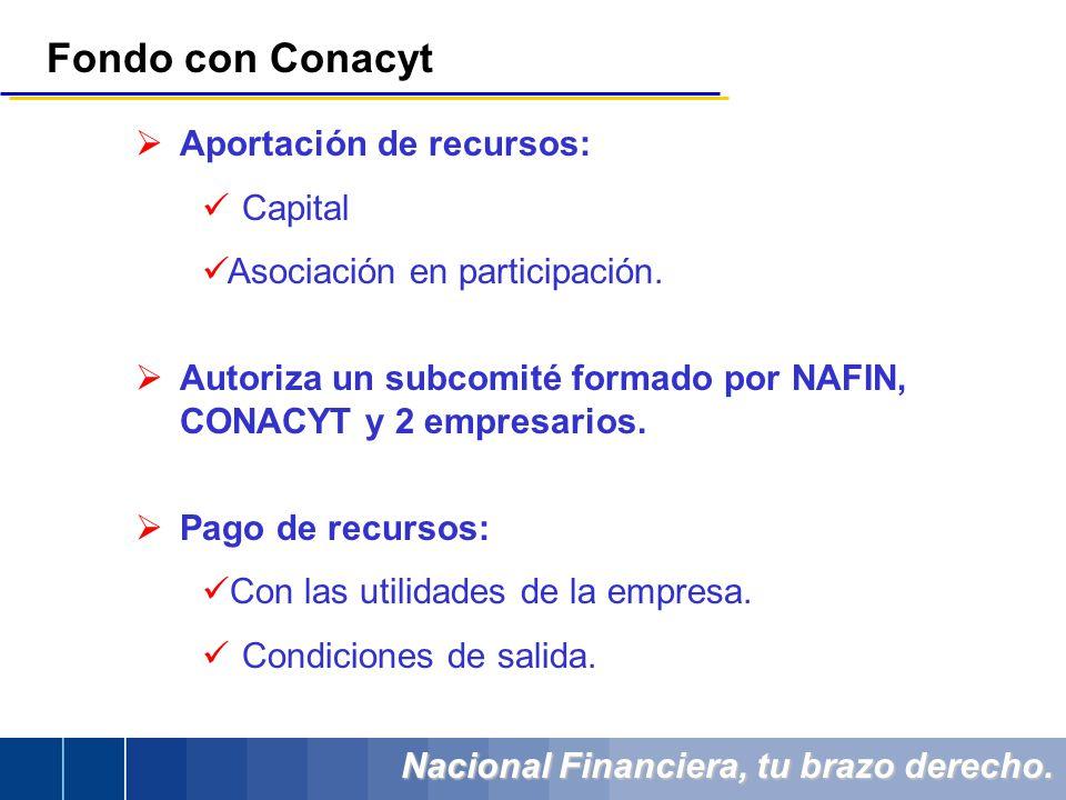 Nacional Financiera, tu brazo derecho. Aportación de recursos: Capital Asociación en participación. Autoriza un subcomité formado por NAFIN, CONACYT y