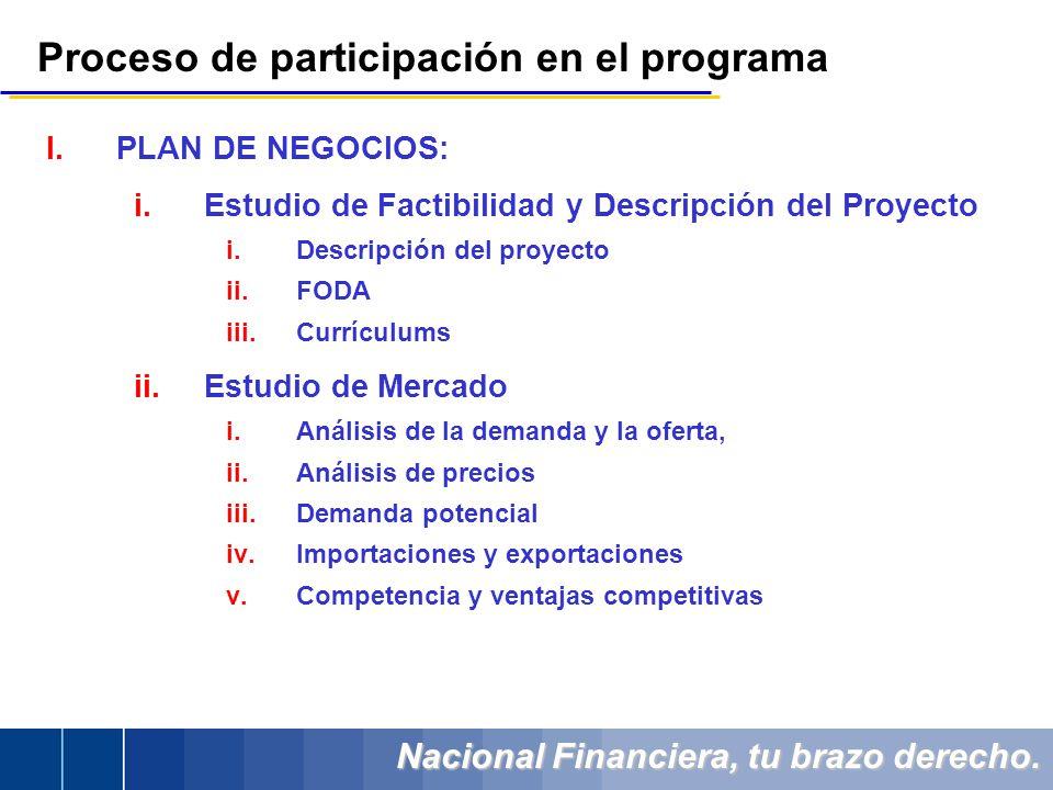 Nacional Financiera, tu brazo derecho. Proceso de participación en el programa I.PLAN DE NEGOCIOS: i.Estudio de Factibilidad y Descripción del Proyect
