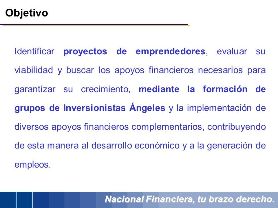 Nacional Financiera, tu brazo derecho. Identificar proyectos de emprendedores, evaluar su viabilidad y buscar los apoyos financieros necesarios para g