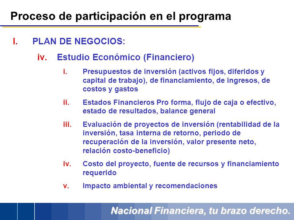 Nacional Financiera, tu brazo derecho. Proceso de participación en el programa I.PLAN DE NEGOCIOS: iv.Estudio Económico (Financiero) i.Presupuestos de