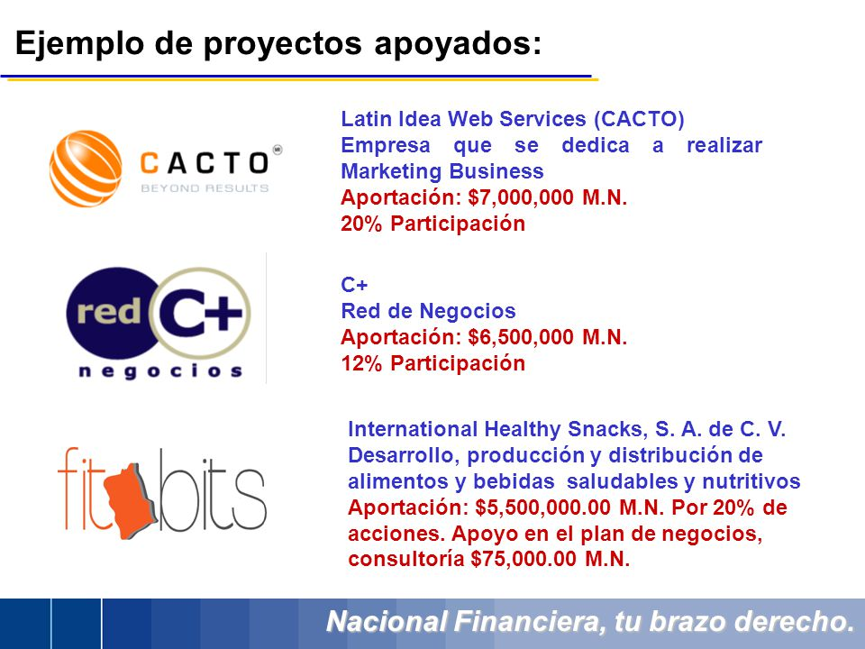 Nacional Financiera, tu brazo derecho. Latin Idea Web Services (CACTO) Empresa que se dedica a realizar Marketing Business Aportación: $7,000,000 M.N.