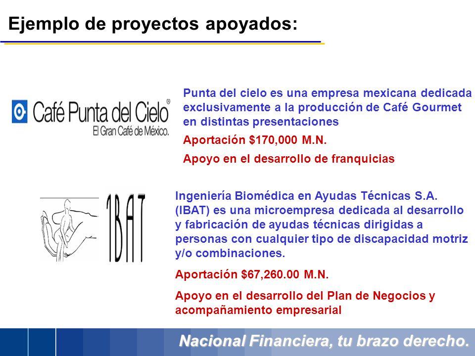 Nacional Financiera, tu brazo derecho. Ejemplo de proyectos apoyados: Punta del cielo es una empresa mexicana dedicada exclusivamente a la producción