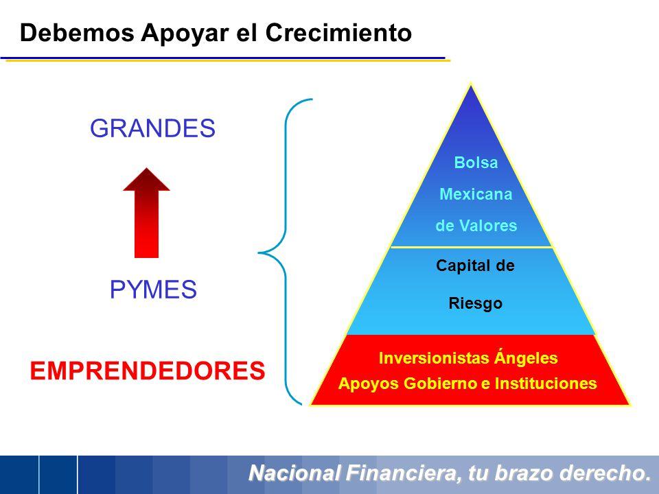 Nacional Financiera, tu brazo derecho. Debemos Apoyar el Crecimiento GRANDES PYMES Bolsa Mexicana de Valores Capital de Riesgo EMPRENDEDORES Apoyos Go