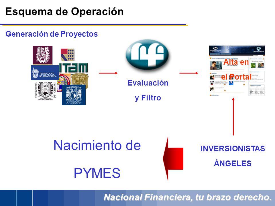 Nacional Financiera, tu brazo derecho. Esquema de Operación Generación de Proyectos INVERSIONISTAS ÁNGELES Evaluación y Filtro Alta en el Portal Nacim