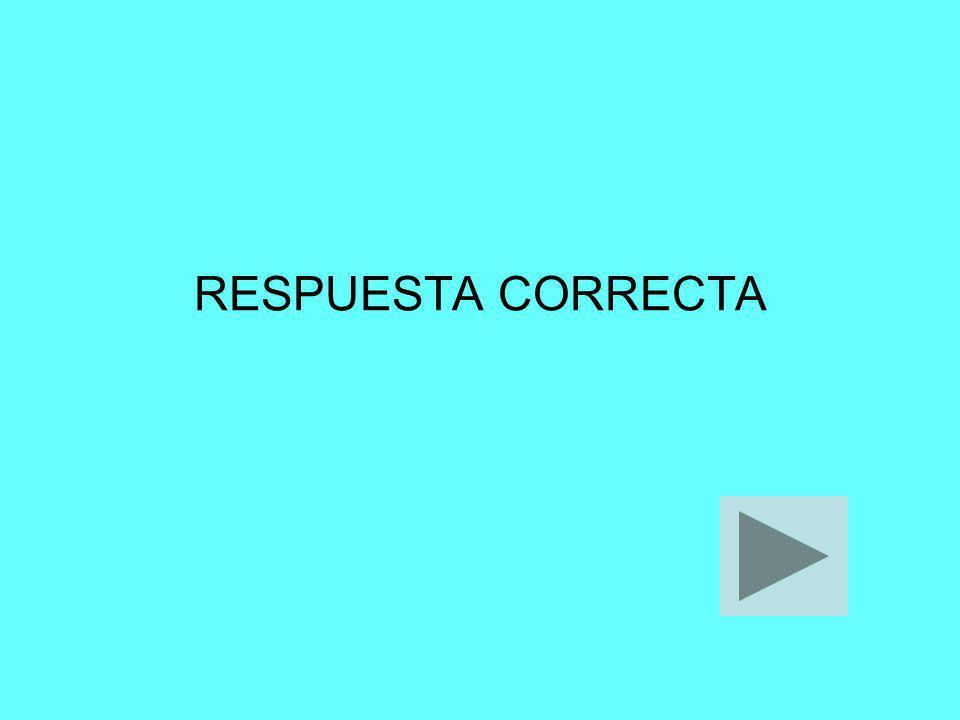 RESPUESTA CORRECTA