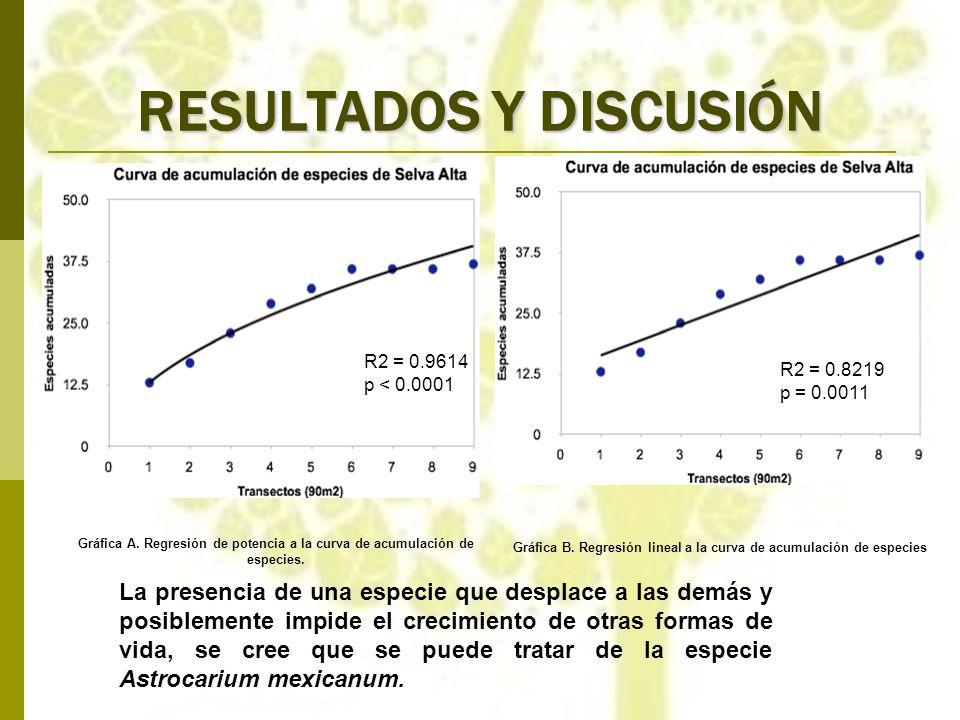 R2 = 0.9614 p < 0.0001 Gráfica A. Regresión de potencia a la curva de acumulación de especies. R2 = 0.8219 p = 0.0011 Gráfica B. Regresión lineal a la