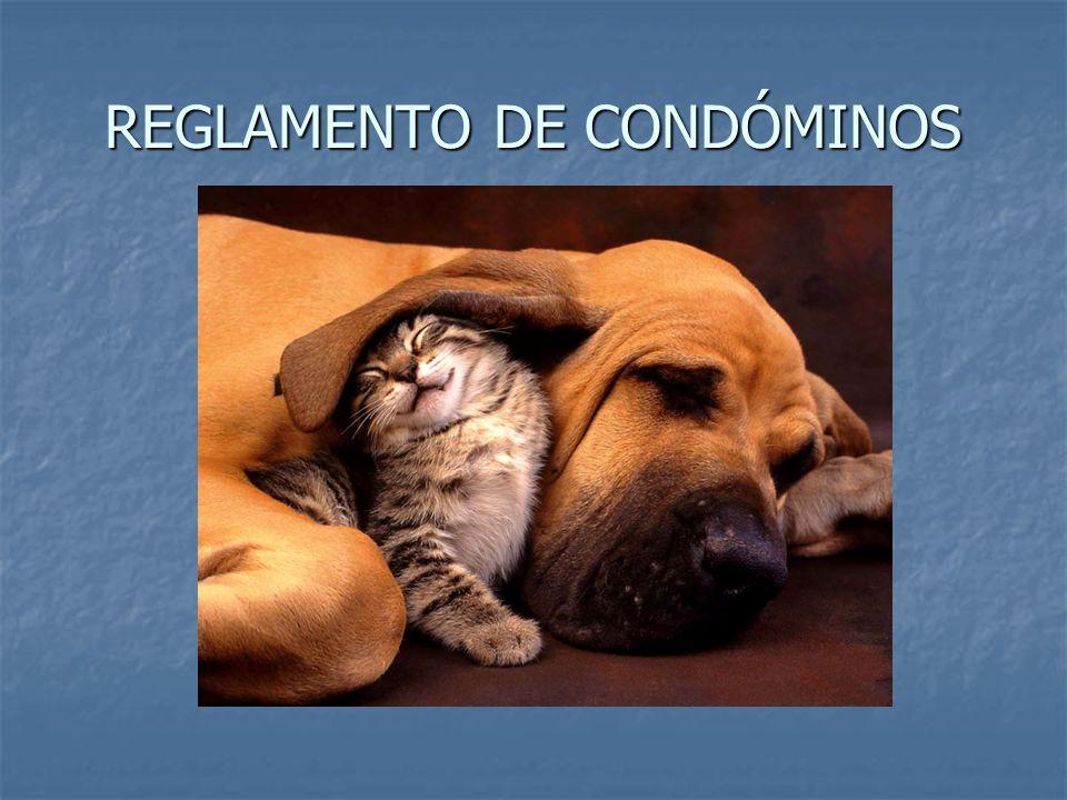REGLAMENTO DE CONDÓMINOS