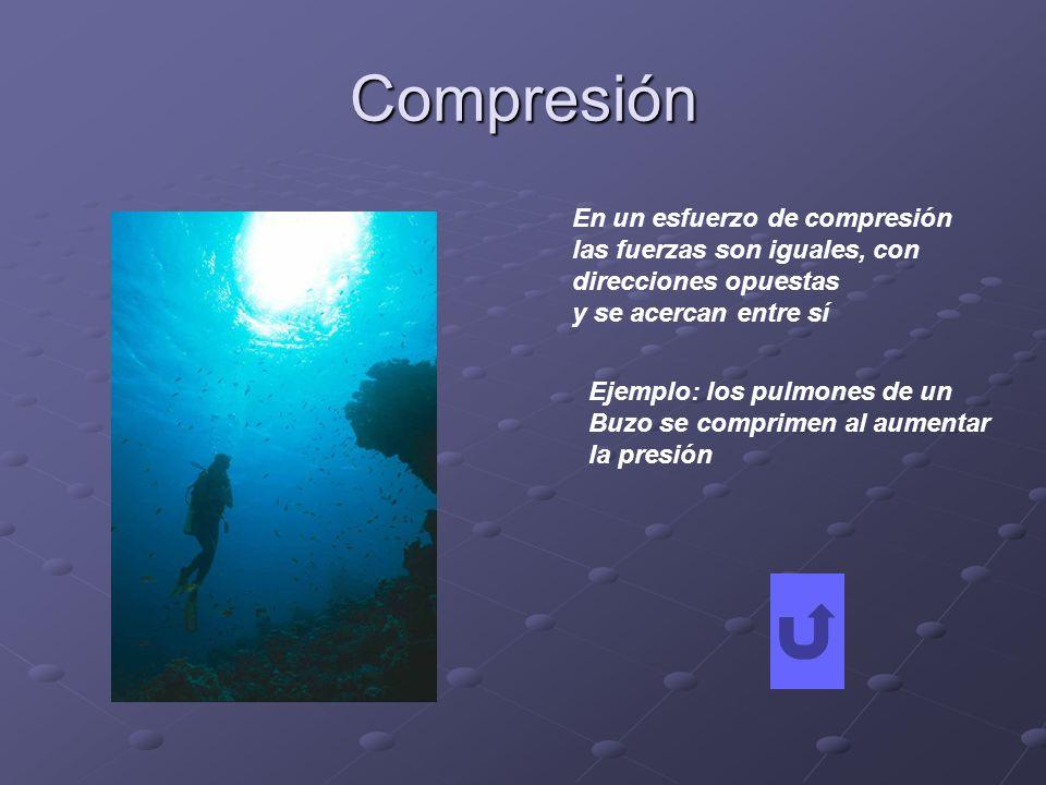 Compresión En un esfuerzo de compresión las fuerzas son iguales, con direcciones opuestas y se acercan entre sí Ejemplo: los pulmones de un Buzo se co