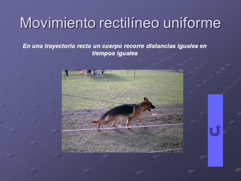Movimiento rectilíneo uniforme En una trayectoria recta un cuerpo recorre distancias iguales en tiempos iguales