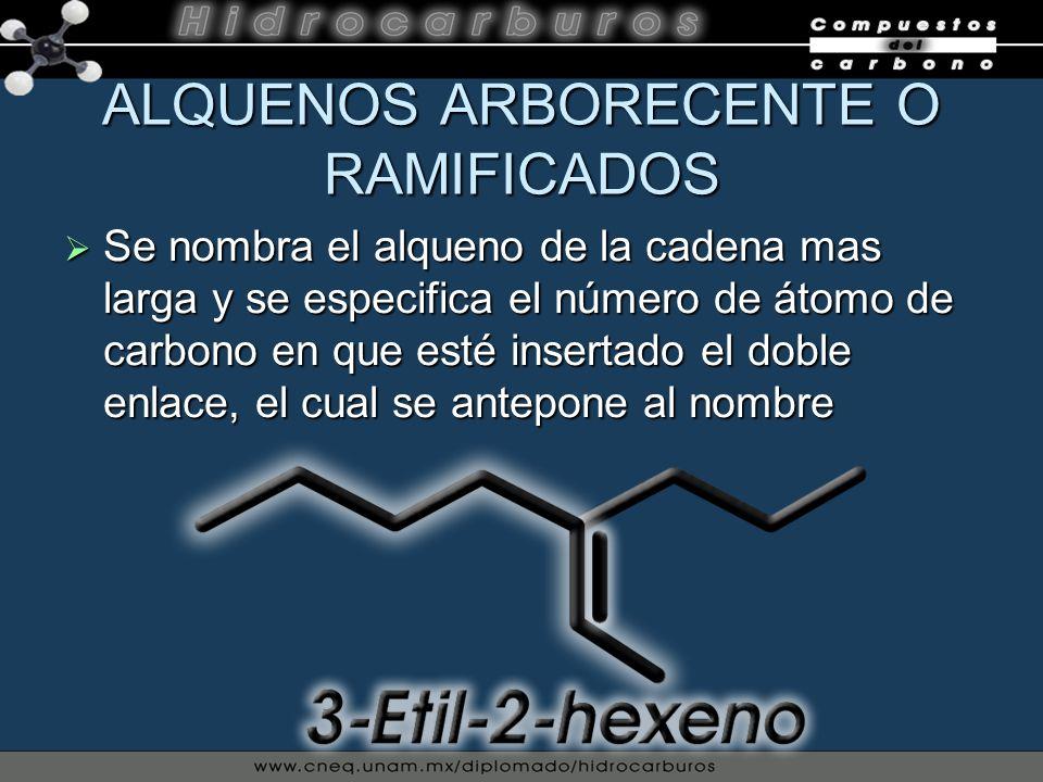 ALQUENOS ARBORECENTE O RAMIFICADOS Se nombra el alqueno de la cadena mas larga y se especifica el número de átomo de carbono en que esté insertado el