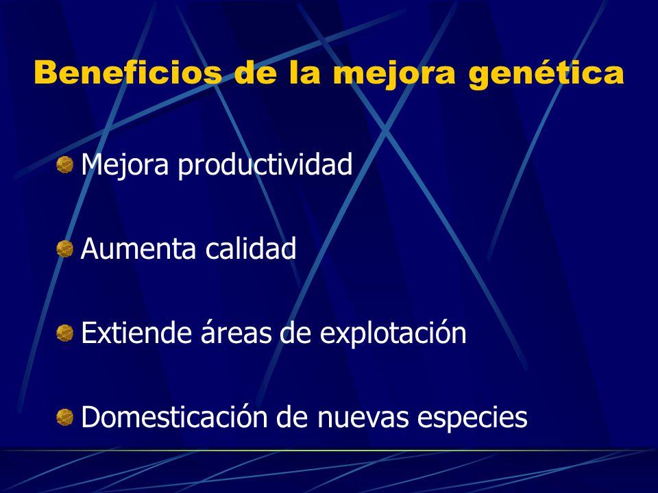 Beneficios de la mejora genética Mejora productividad Aumenta calidad Extiende áreas de explotación Domesticación de nuevas especies