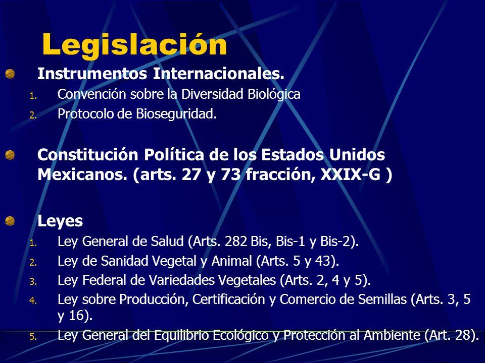 Legislación Instrumentos Internacionales. 1. Convención sobre la Diversidad Biológica 2. Protocolo de Bioseguridad. Constitución Política de los Estad