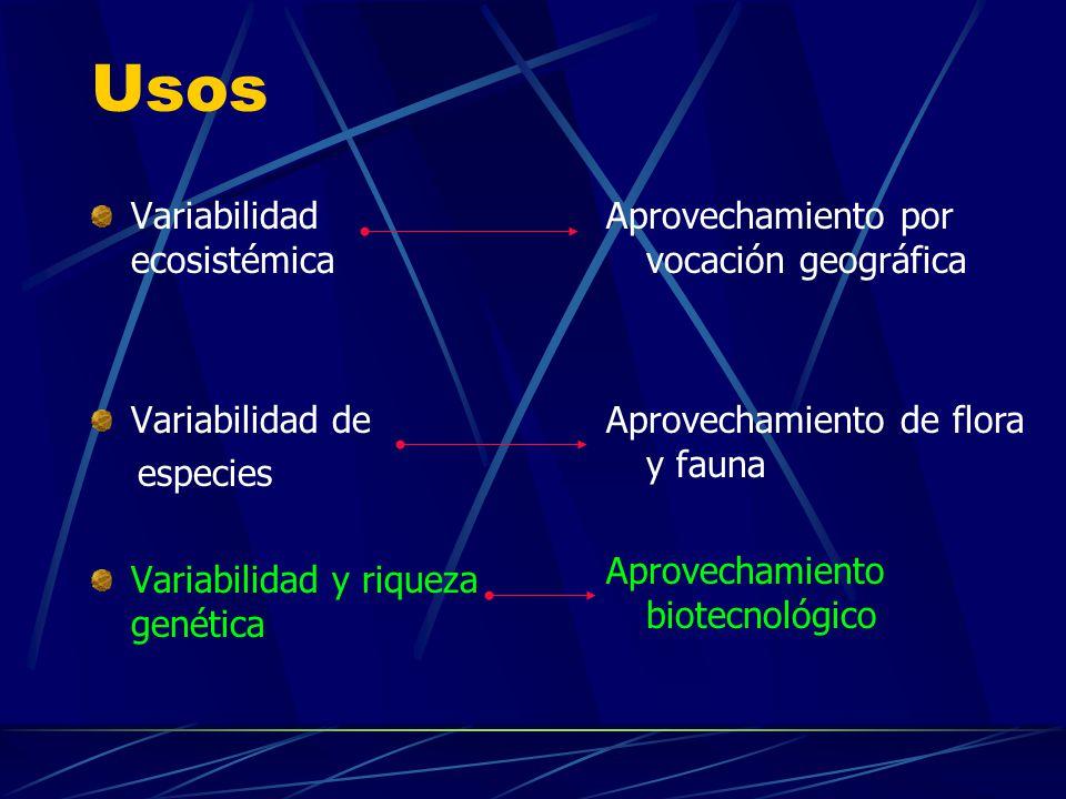 Usos Variabilidad ecosistémica Variabilidad de especies Variabilidad y riqueza genética Aprovechamiento por vocación geográfica Aprovechamiento de flo