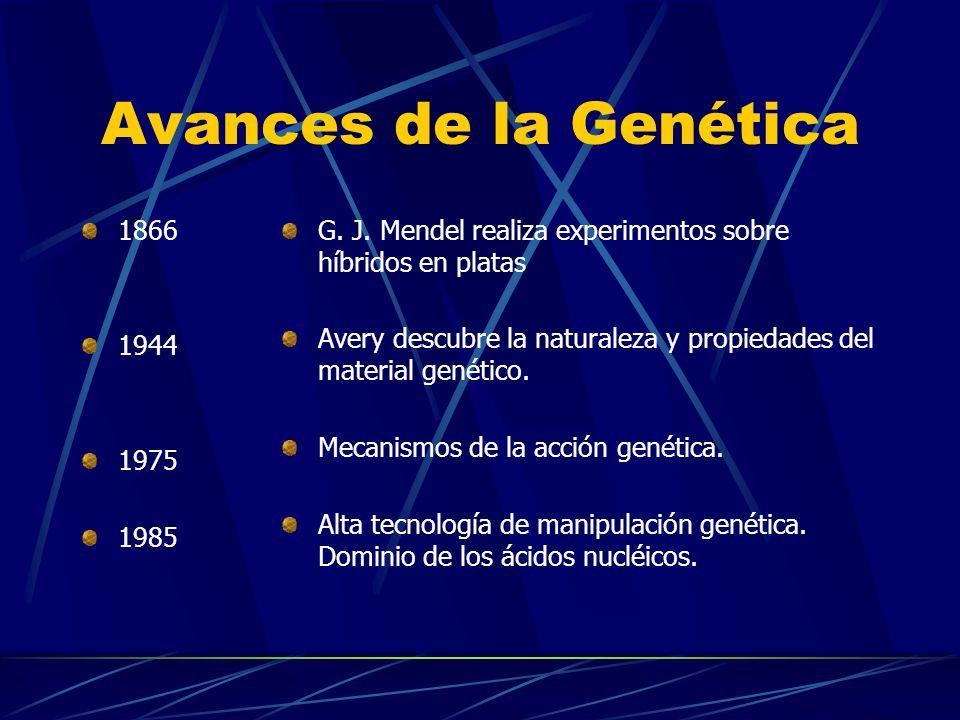 Avances de la Genética 1866 1944 1975 1985 G. J. Mendel realiza experimentos sobre híbridos en platas Avery descubre la naturaleza y propiedades del m