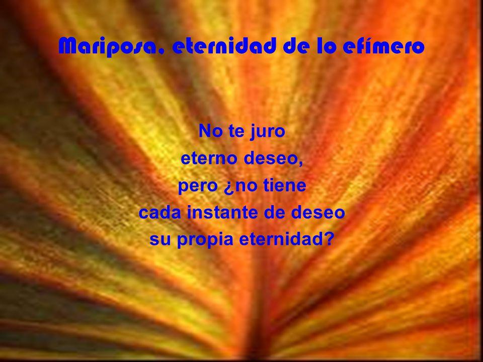 Mariposa, eternidad de lo efímero No te juro eterno deseo, pero ¿no tiene cada instante de deseo su propia eternidad?