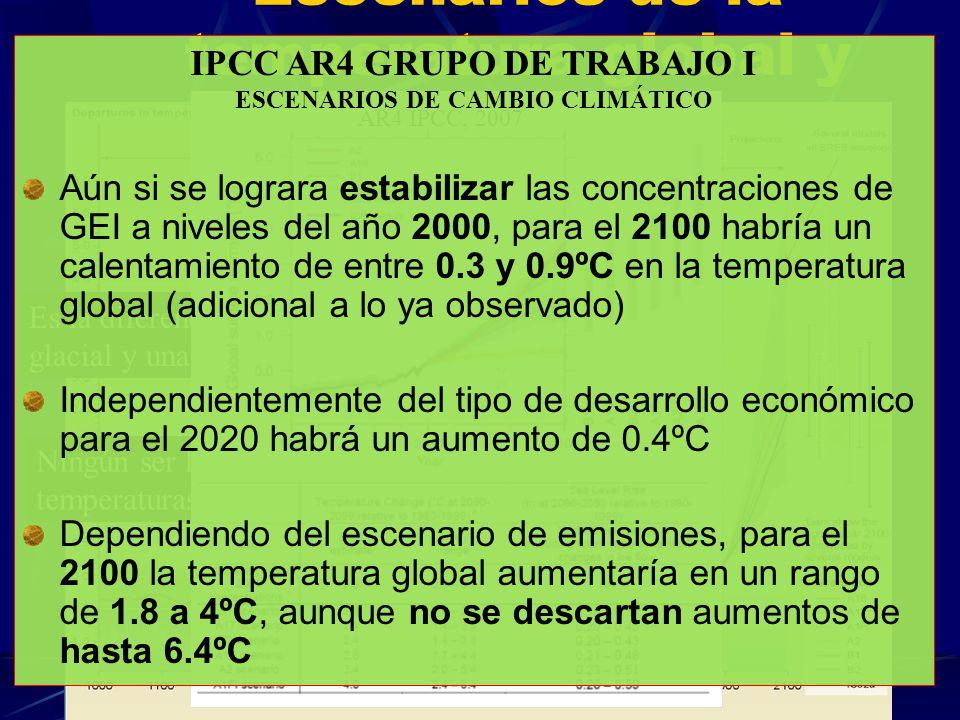 Escenarios de la temperatura global y sus incertidumbres TAR IPCC, 2001 Es la diferencia entre una era glacial y una interglacial Ningún ser humano ha