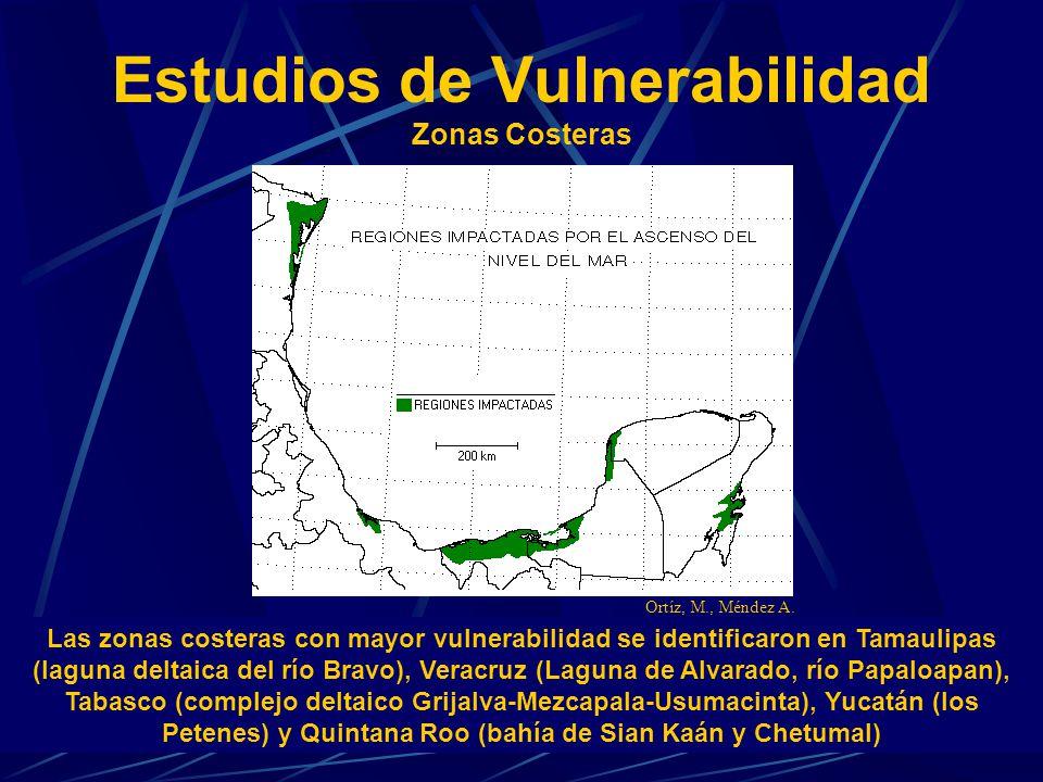 Estudios de Vulnerabilidad Zonas Costeras Las zonas costeras con mayor vulnerabilidad se identificaron en Tamaulipas (laguna deltaica del río Bravo),