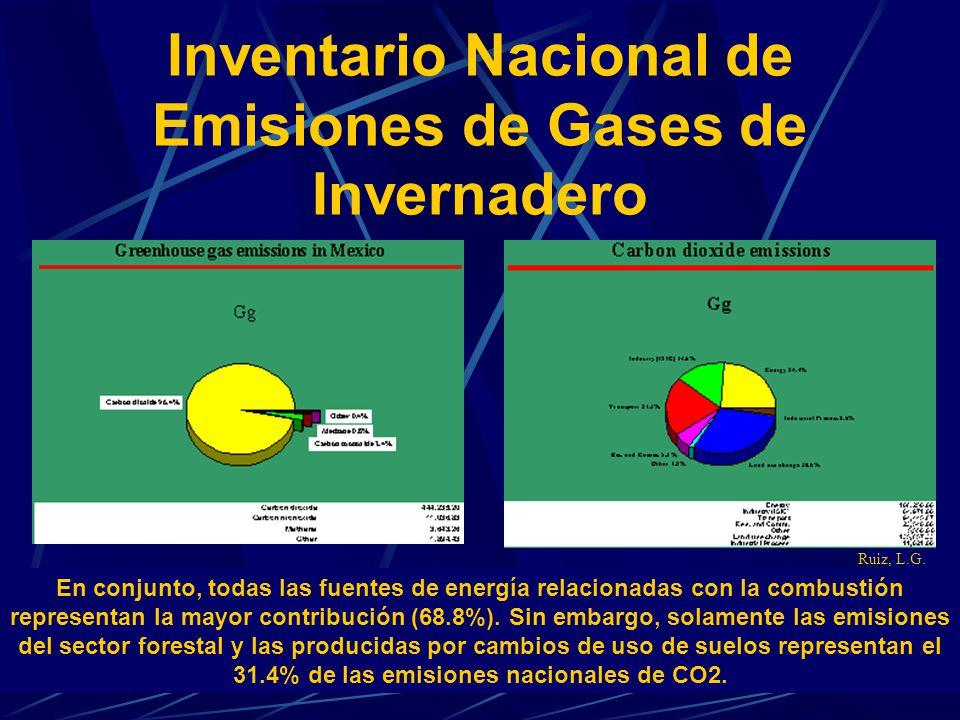 Inventario Nacional de Emisiones de Gases de Invernadero En conjunto, todas las fuentes de energía relacionadas con la combustión representan la mayor