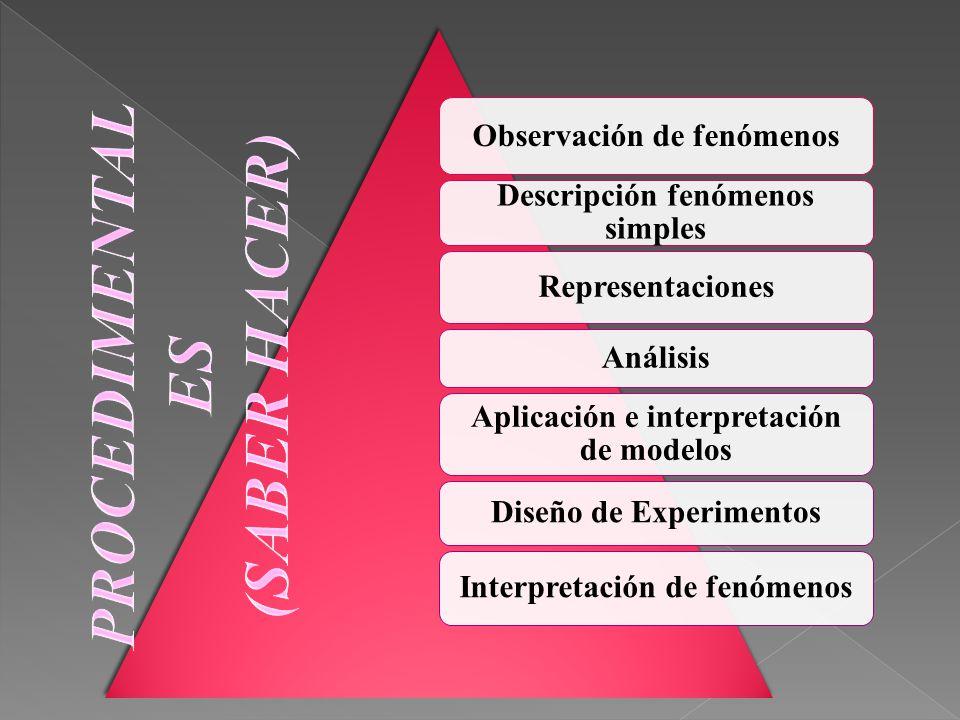 Observación de fenómenos Descripción fenómenos simples Representaciones Análisis Aplicación e interpretación de modelos Diseño de Experimentos Interpr