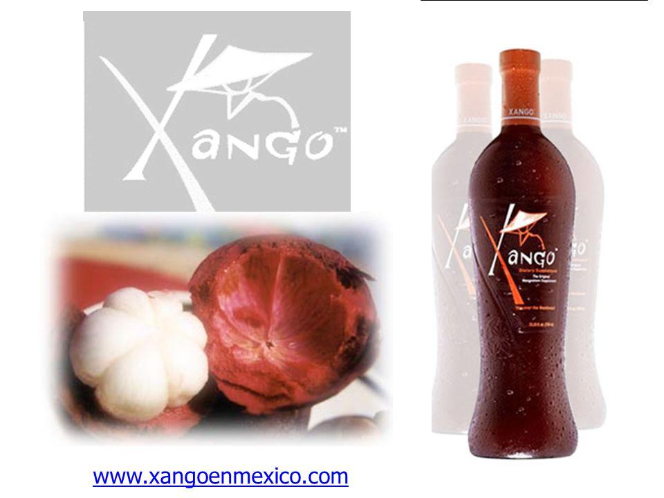 www.xangoenmexico.com